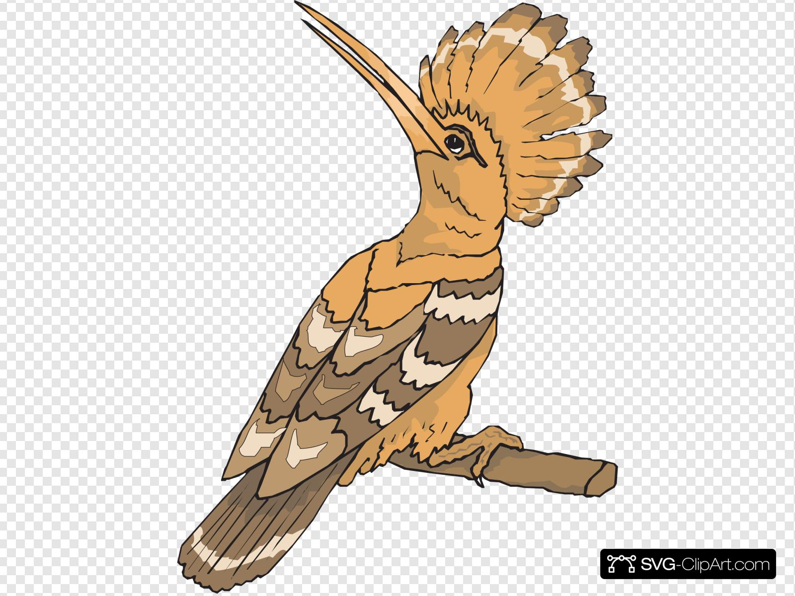 Looking back clipart clip art freeuse stock Perched Hoopoe Looking Back Clip art, Icon and SVG - SVG Clipart clip art freeuse stock
