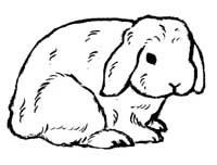Lop eared rabbit clipart jpg freeuse library Rabbit Silhouette Cliparts   Free download best Rabbit ... jpg freeuse library