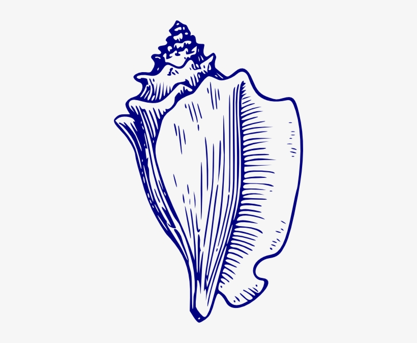 Lord of the flies black and white clipart clip art stock Blue Shell Clip Art - Lord Of The Flies Clip Art Conch ... clip art stock
