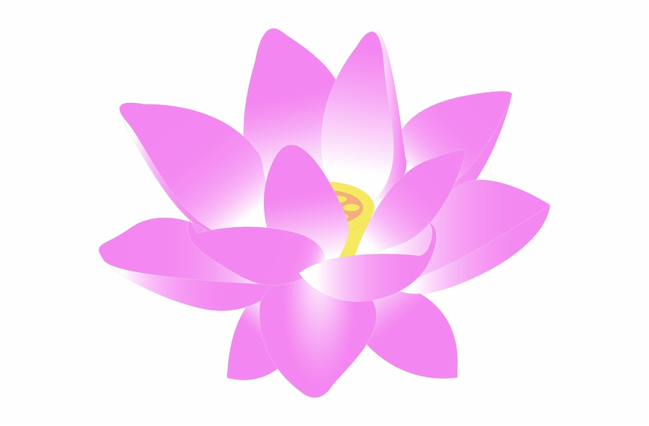 Lotus flower clipart free download clipart library Flower, Water Lily, Lily, Lotus, Aquatic, Bloom - Lotus ... clipart library