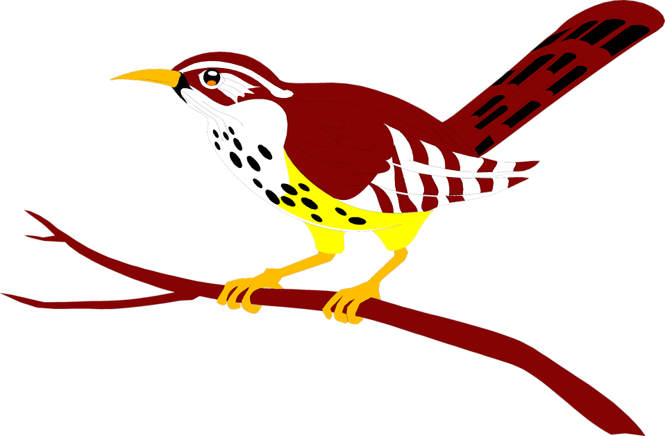 Love birds in tree clipart svg stock Bird Red | Free Stock Photo | Illustration of a red bird perched on ... svg stock
