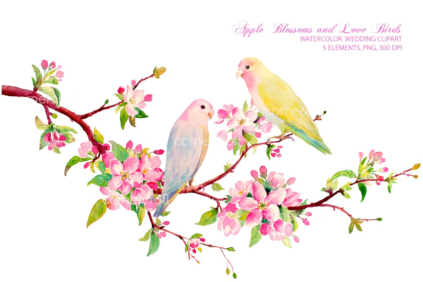 Love birds in tree clipart image Love Birds PNG Download Image - peoplepng.com image