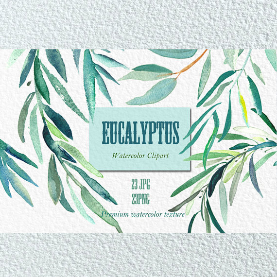 Love clipart mint gree banner black and white library Eucalyptus branches watercolor clipart hand drawn. Romantic banner black and white library