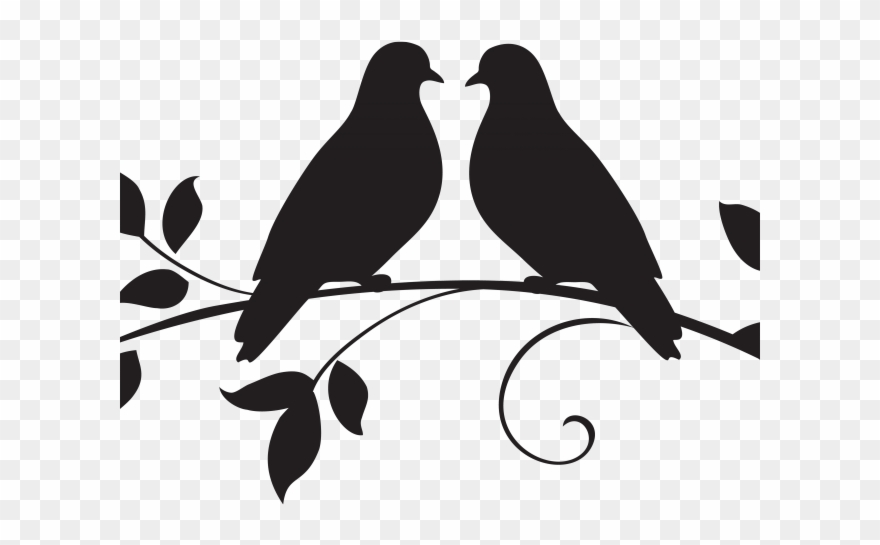 Love doves drawing clipart black and white vector library download White Dove Clipart Marriage - Drawing Two Bird Love - Png ... vector library download