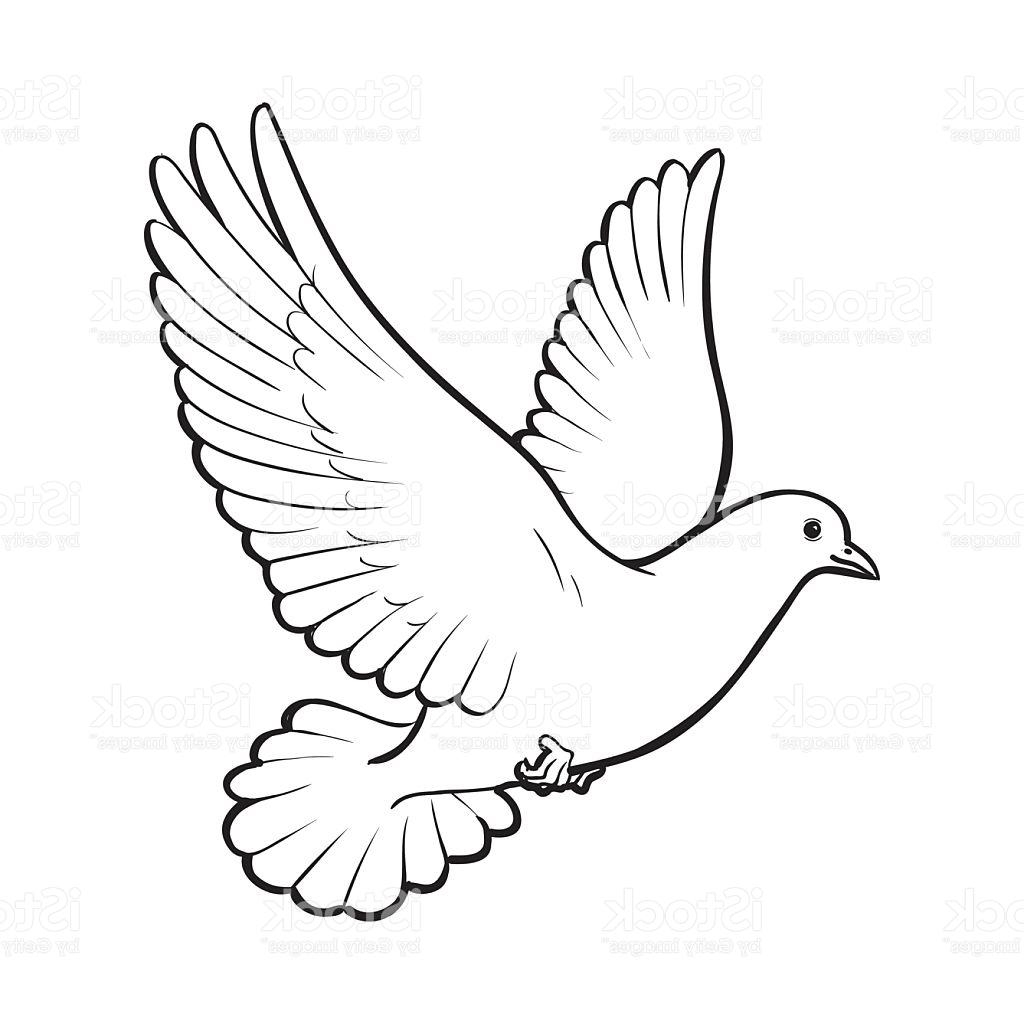 Love doves drawing clipart black and white picture royalty free White Dove Drawing | Free download best White Dove Drawing ... picture royalty free