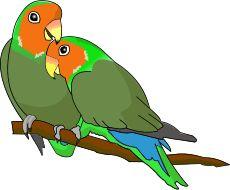 Lovebird clipart freeuse stock Collection of Lovebird clipart | Free download best Lovebird ... freeuse stock