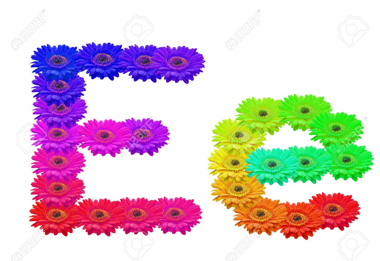 Lower case e clipart banner freeuse library Daisy Upper And Lower Case E Isolated Stock Photo, Picture And ... banner freeuse library