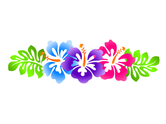 Luau flower clipart picture library download File:Luau-clip-art-borders-free-hibiscus-line-border.svg   Animal ... picture library download