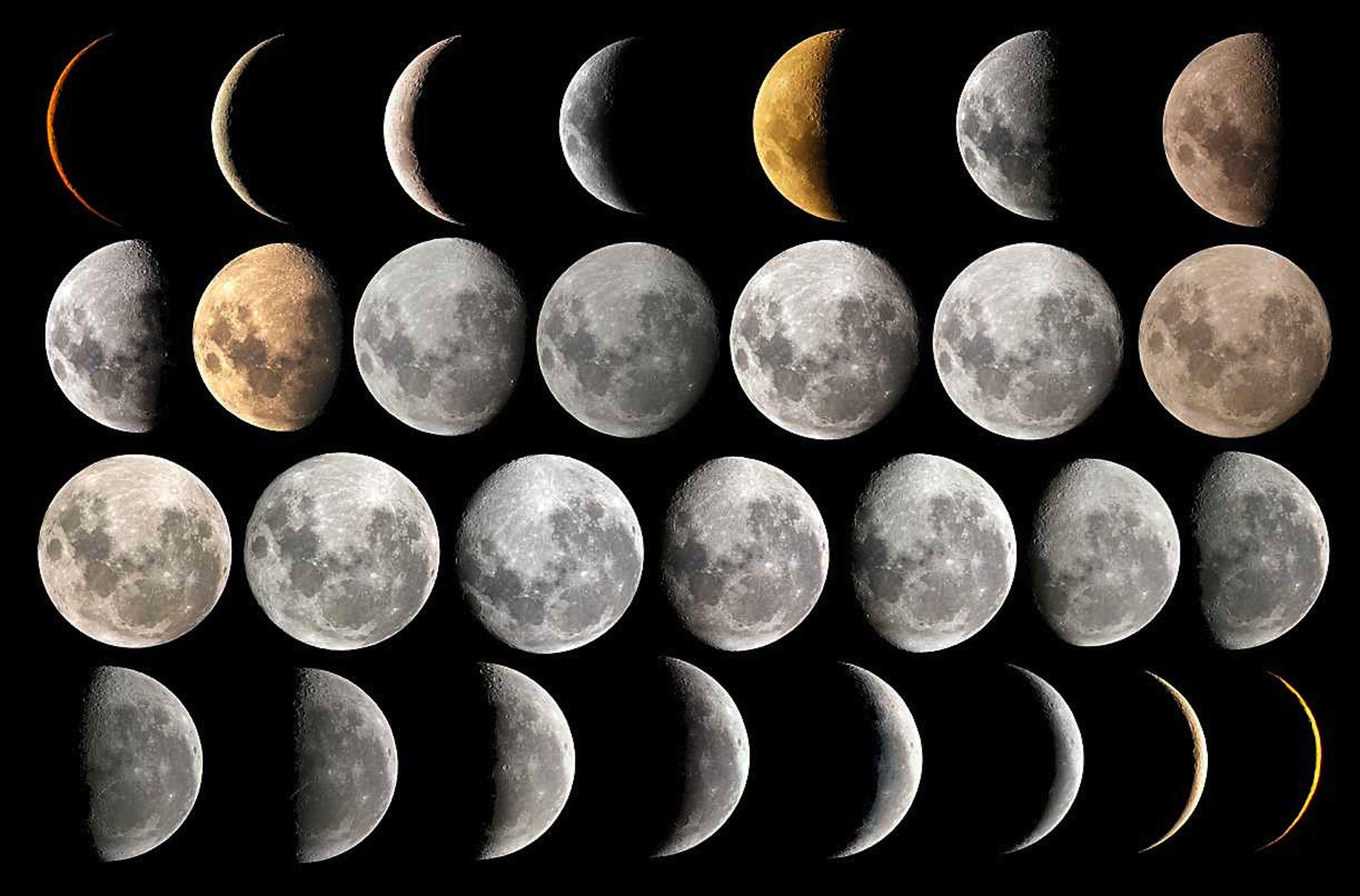 Lunar calendar clipart jpg freeuse Moon calendar clipart | Witchcraft: Moon Magic | Lunar hair chart ... jpg freeuse