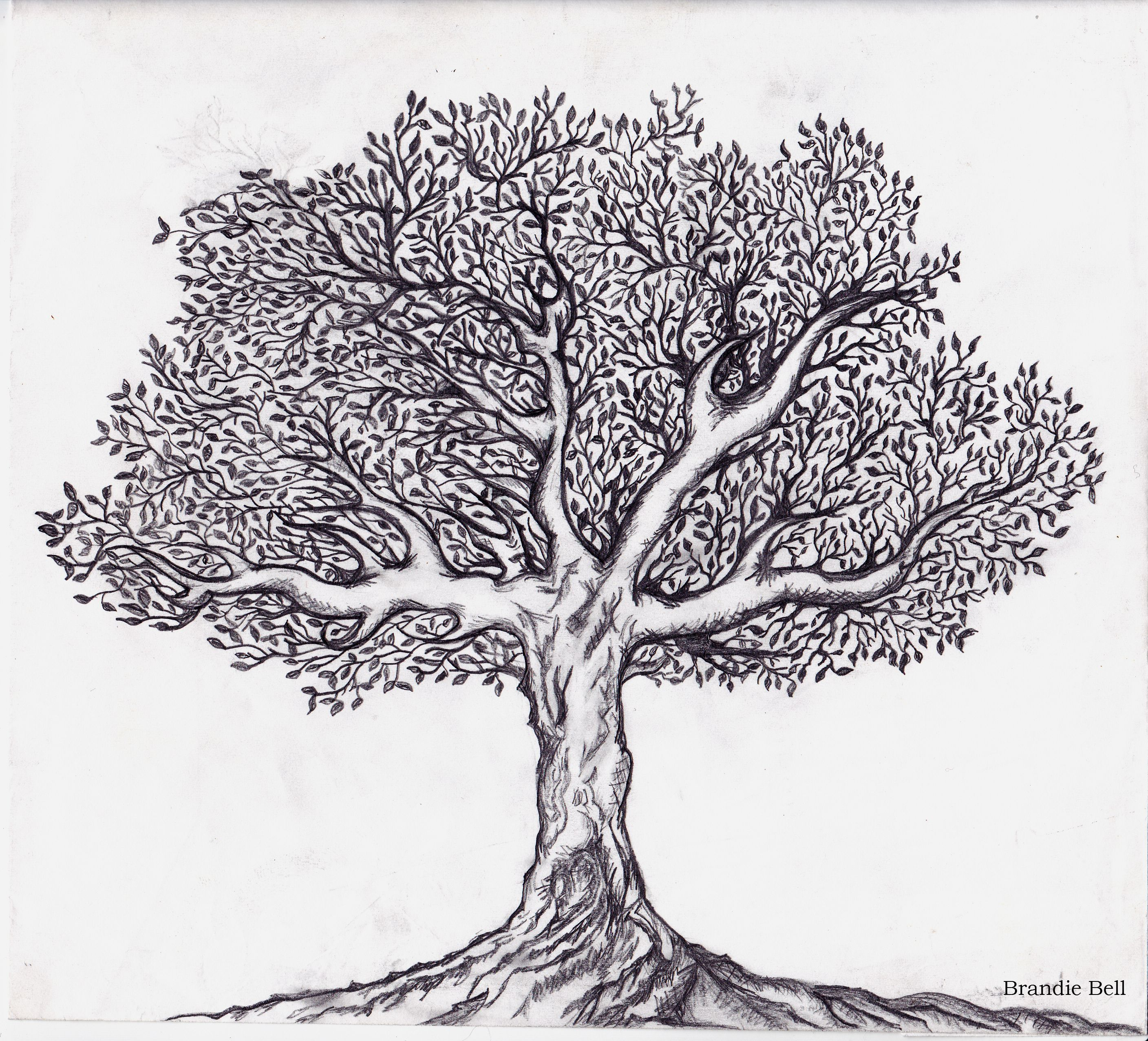 Tree with magic hole clipart graphic tree of life black and white clipart - Google Search | Tree ... graphic