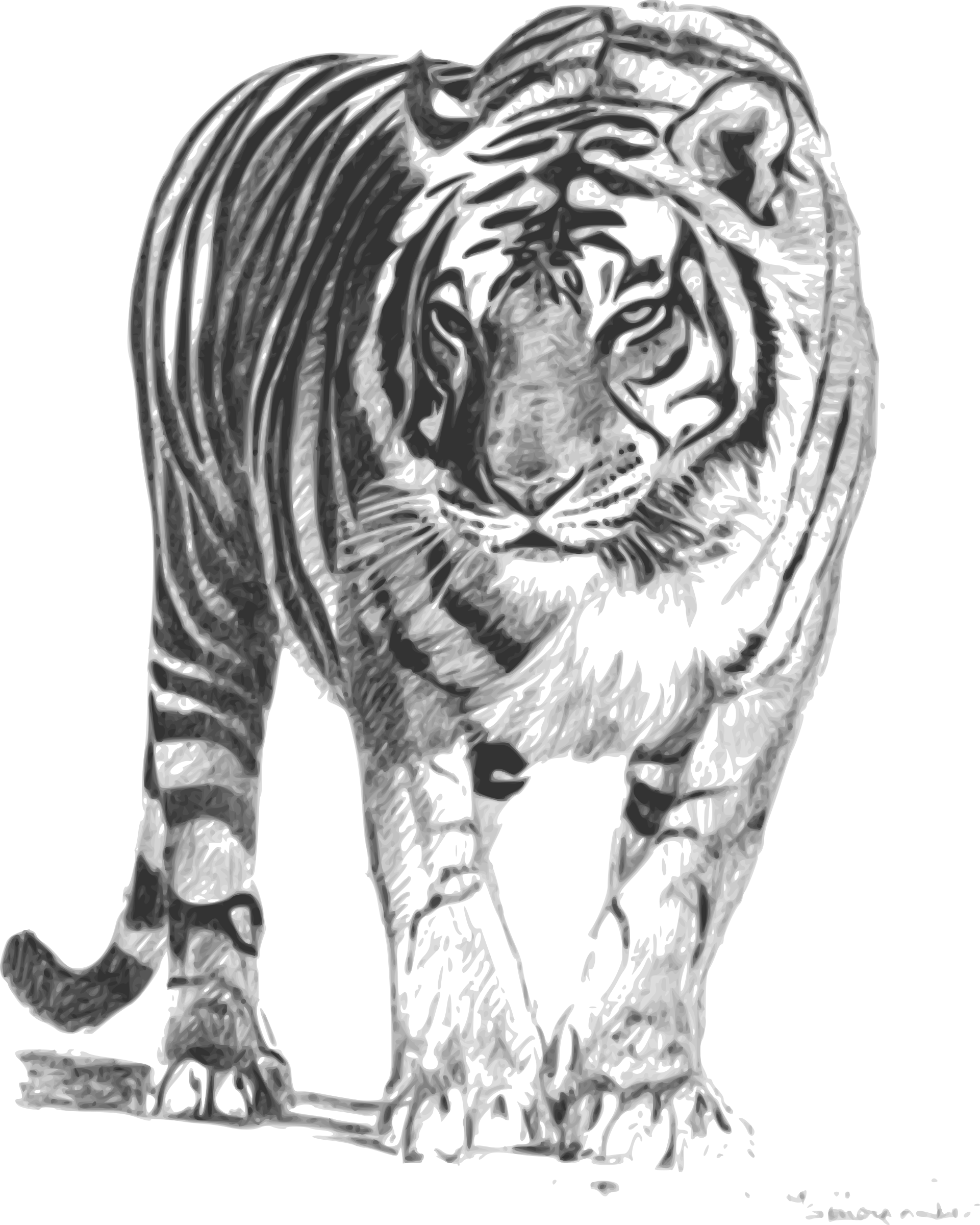 Mad cat clipart clip art freeuse download Big Cat Clipart bengal tiger - Free Clipart on Dumielauxepices.net clip art freeuse download