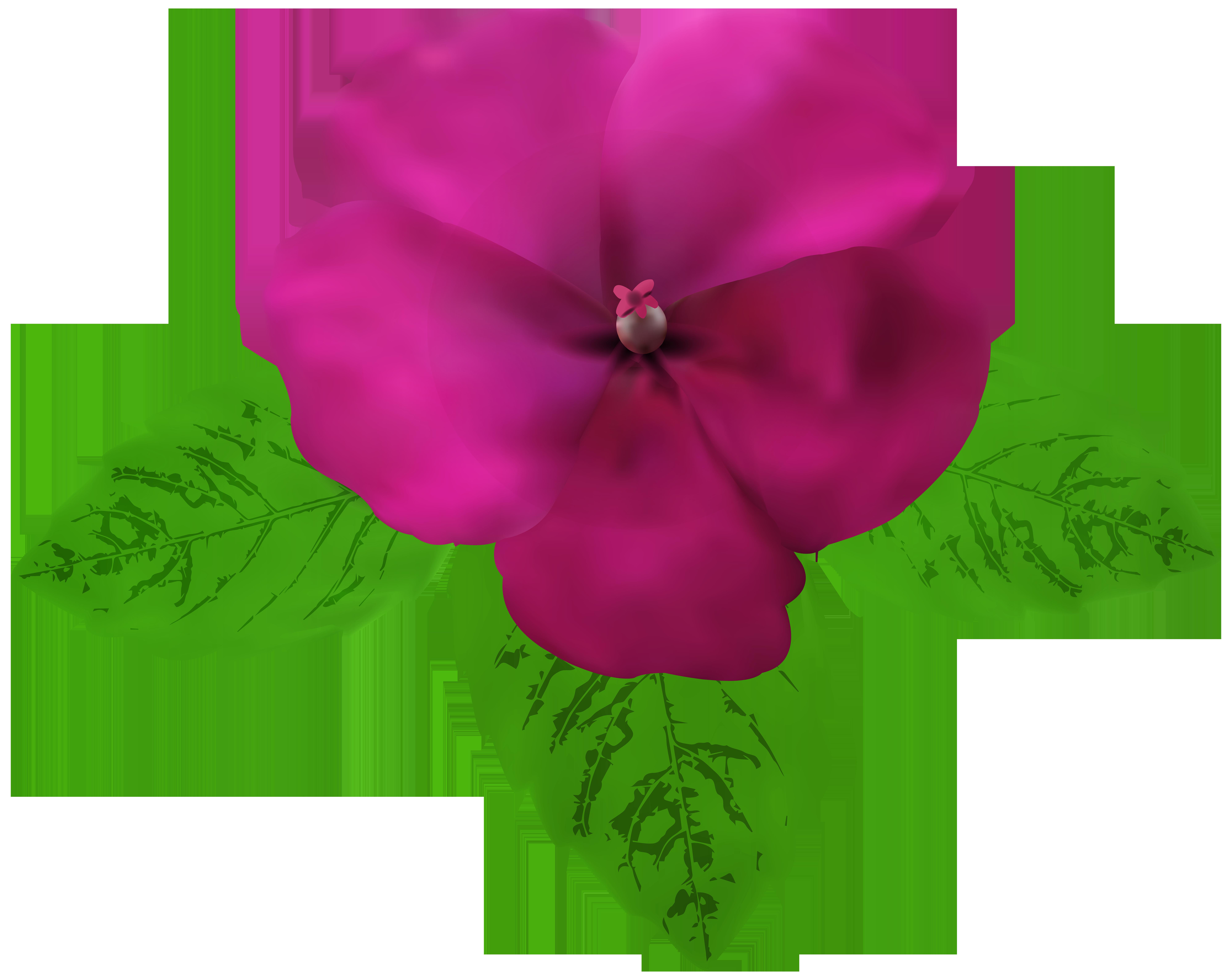 Magenta flower clipart clip art royalty free download Magenta Flower PNG Clip Art | Gallery Yopriceville - High-Quality ... clip art royalty free download