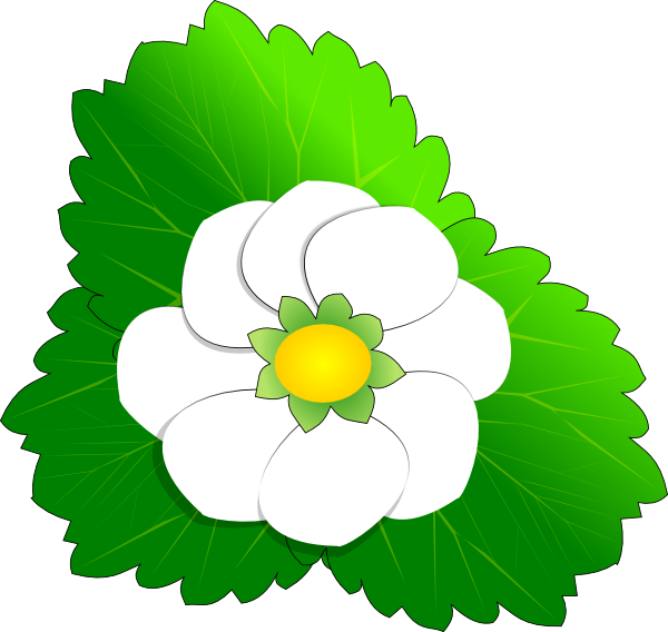 Strawberry flower clipart vector free Strawberry Flower Clip Art at Clker.com - vector clip art online ... vector free