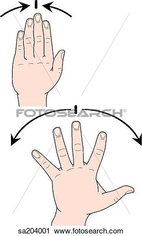 Main gauche clipart clip stock Clipart of Two images of the external anatomy of the left hand as ... clip stock