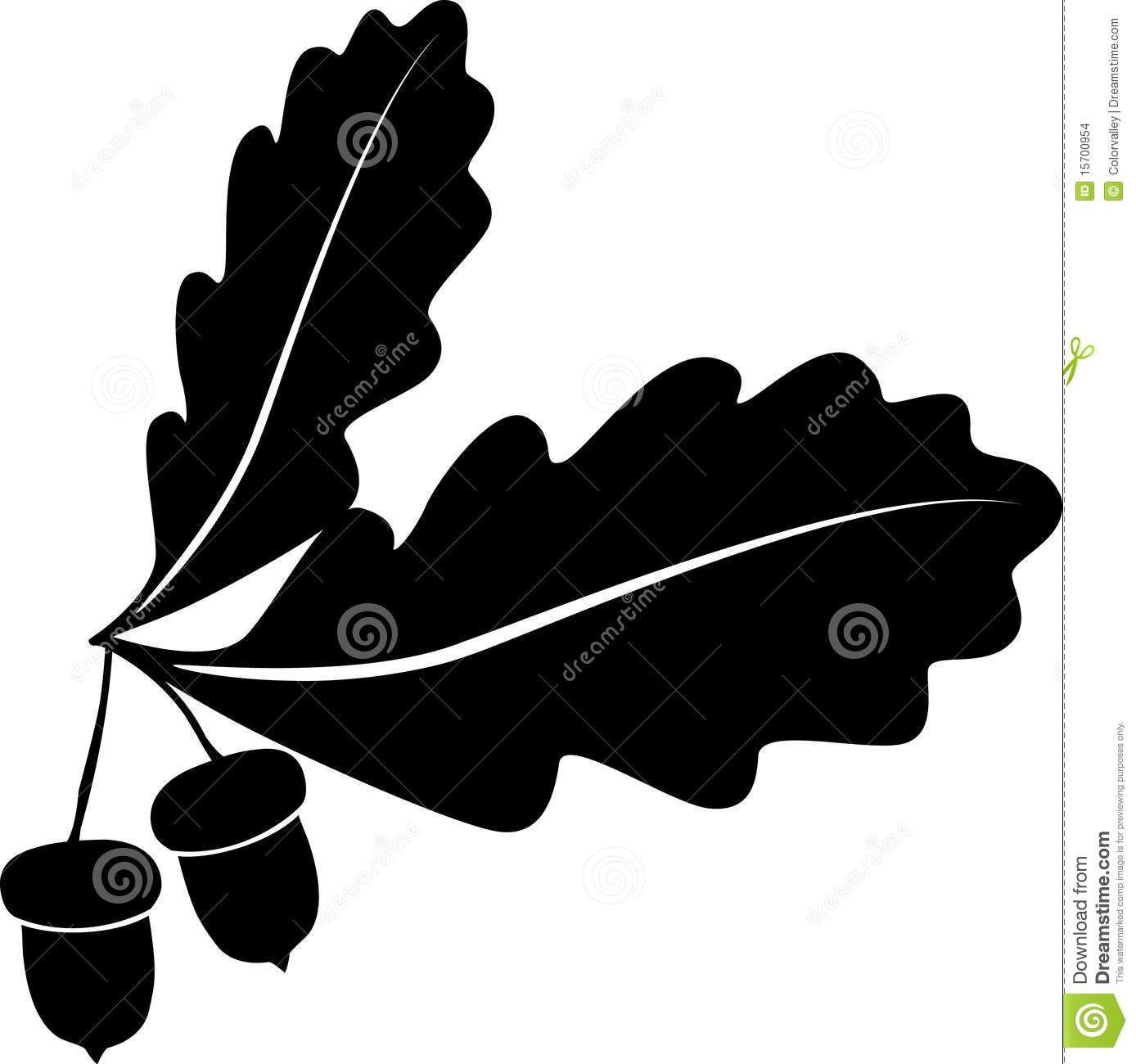 Major oak leaf clipart black and white vector freeuse Oak Tree Tattoo Stock Illustrations, Vectors, & Clipart ... vector freeuse