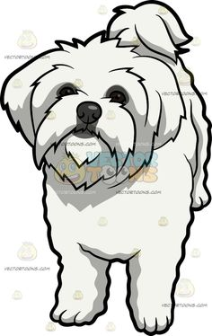 Maltipoo clipart royalty free download Maltipoo clipart 3 » Clipart Station royalty free download