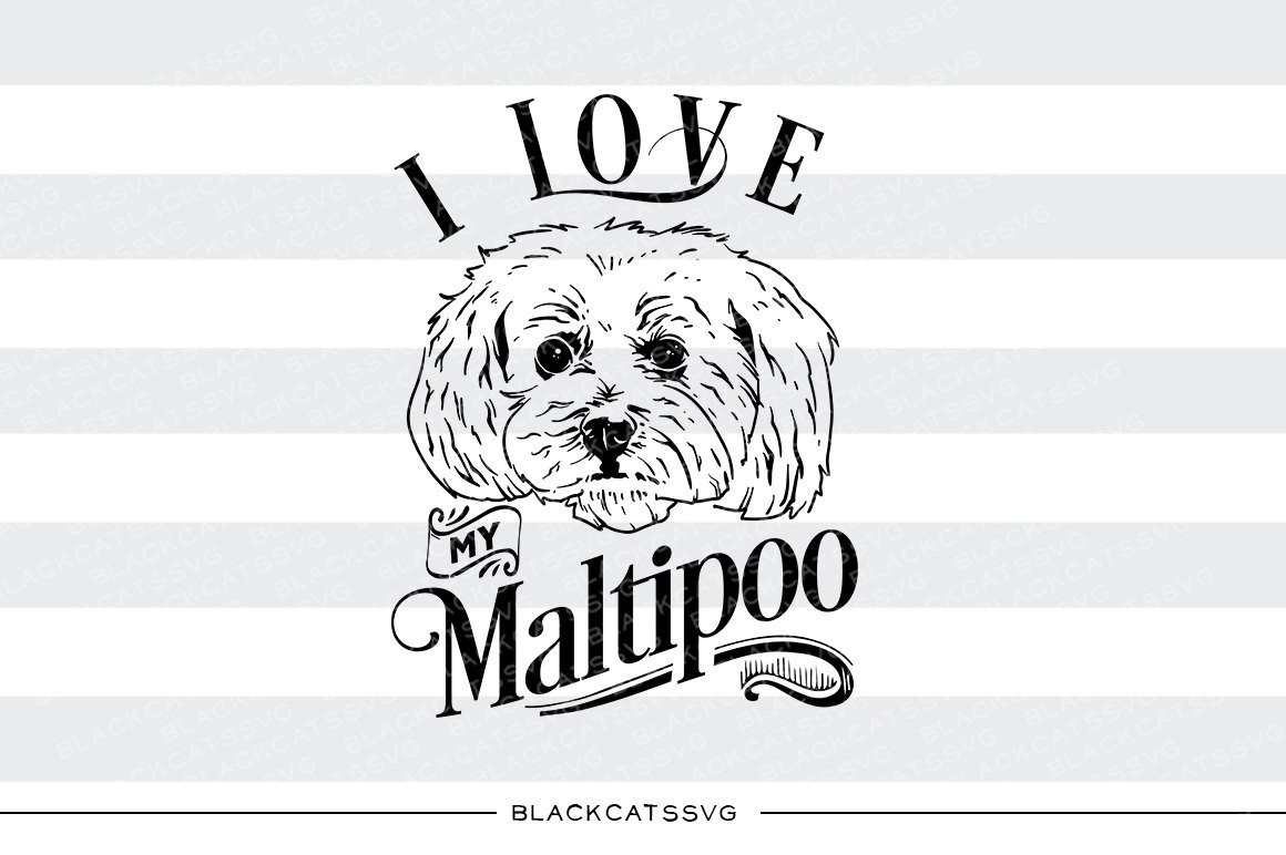 Maltipoo clipart clip art transparent stock I love my Maltipoo- SVG file Cutting File Clipart in Svg, Eps, Dxf, Png for  Cricut & Silhouette - I love my Maltipoo dog clip art transparent stock