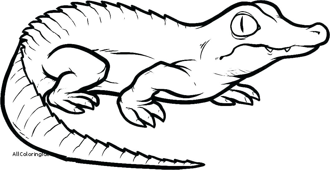Mama and baby alligator clipart line drawing clip art free Lizard Line Drawing | Free download best Lizard Line Drawing on ... clip art free