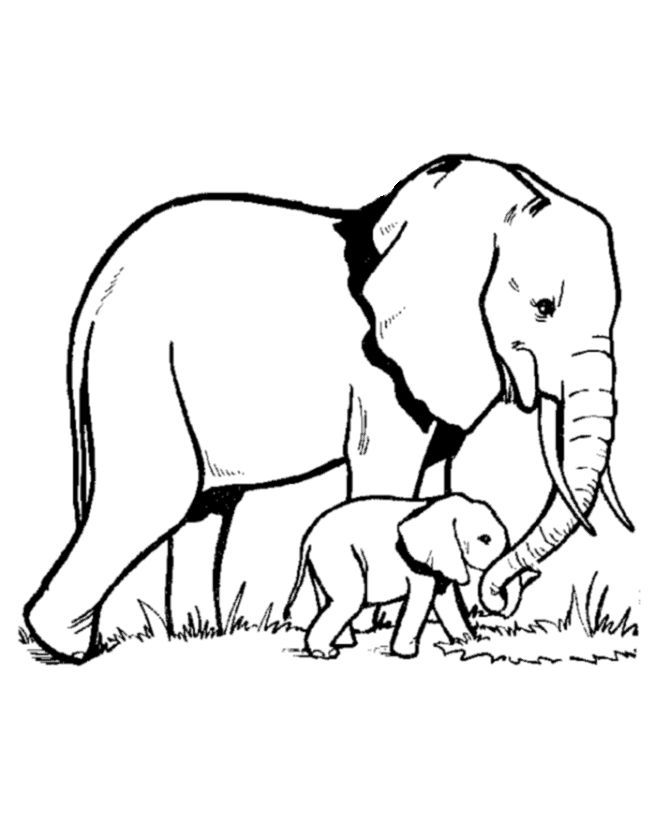 Mommy animal with their baby clipart black and white clip library stock תוצאת תמונה עבור coloring pages animals with mom | Animal ... clip library stock