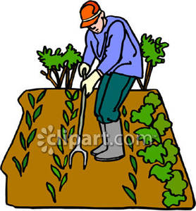 Top down farm clipart clip art freeuse library Man Weeding His Garden - Royalty Free Clipart Picture clip art freeuse library