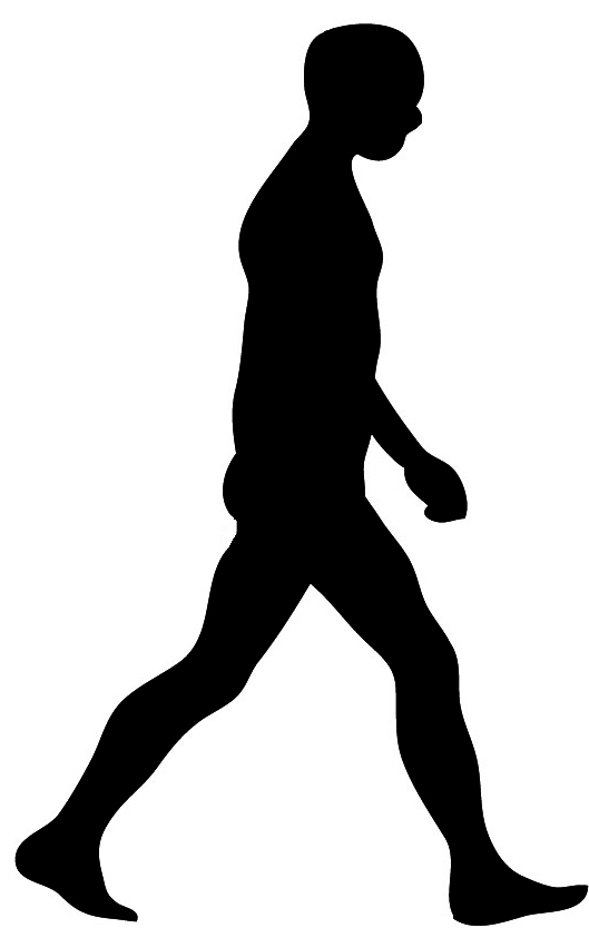 Man walking silhouette clipart clipart library Free Man Walking Silhouette, Download Free Clip Art, Free Clip Art ... clipart library