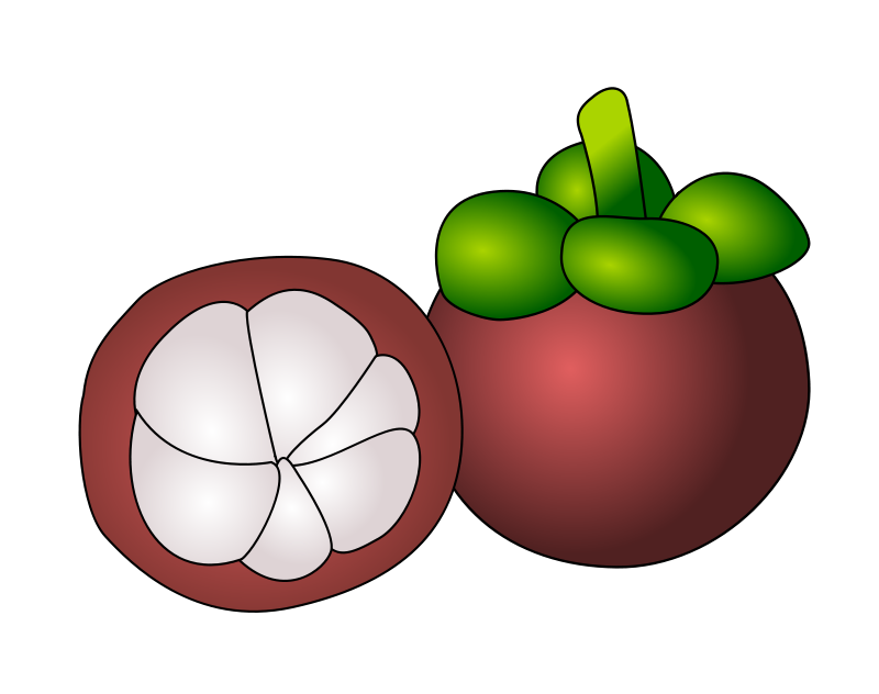 Mangosteen clipart image download Free Clipart: Mangosteen | ycteo image download