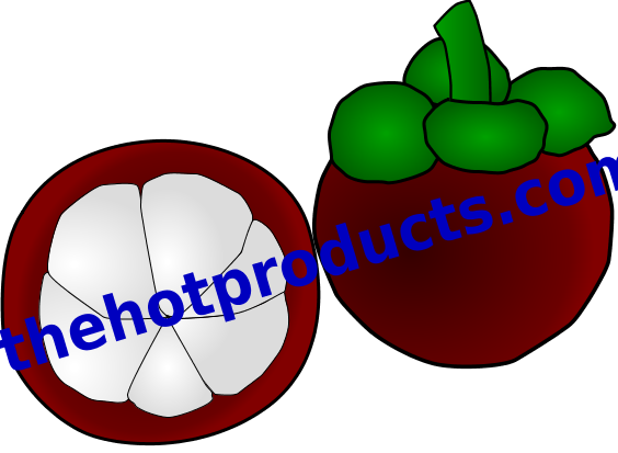 Mangosteen clipart clip freeuse stock Mangosteen Thai Fruit PNG File Clipart | Thehotproducts.com | Clip ... clip freeuse stock