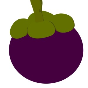 Mangosteen clipart clip free library Mangosteen clipart 7 » Clipart Station clip free library