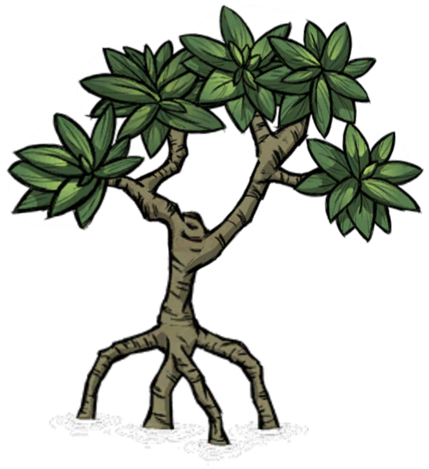 Mangrove tree clipart jpg transparent 28+ Collection of Mangrove Planting Clipart | High quality, free ... jpg transparent