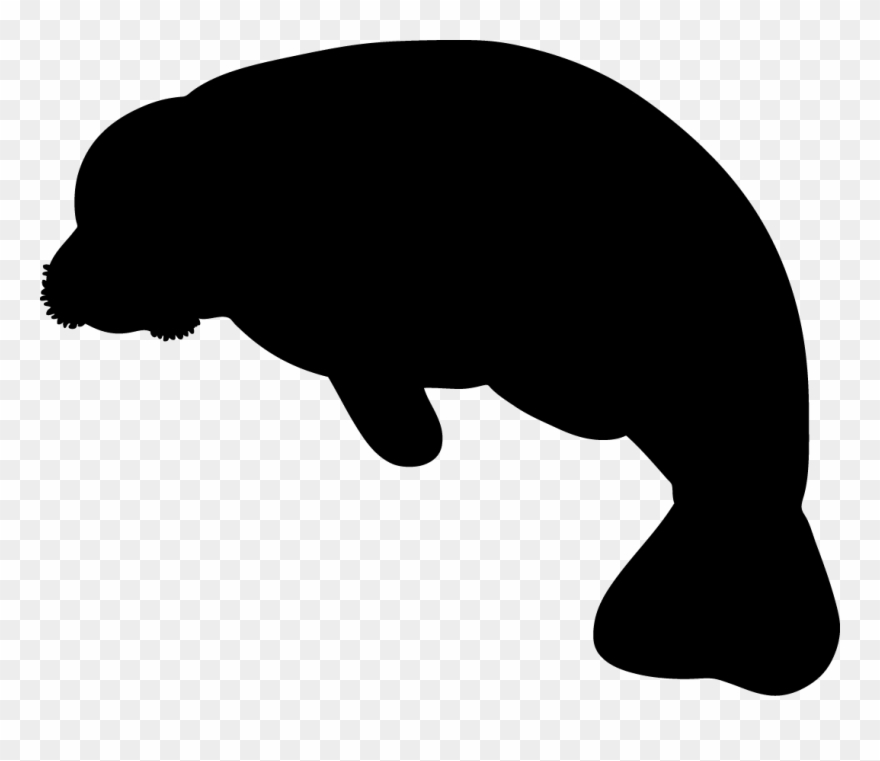 Manitee clipart picture freeuse library Manatee Clipart Black And White 20 - Manatee Clip Art - Png Download ... picture freeuse library