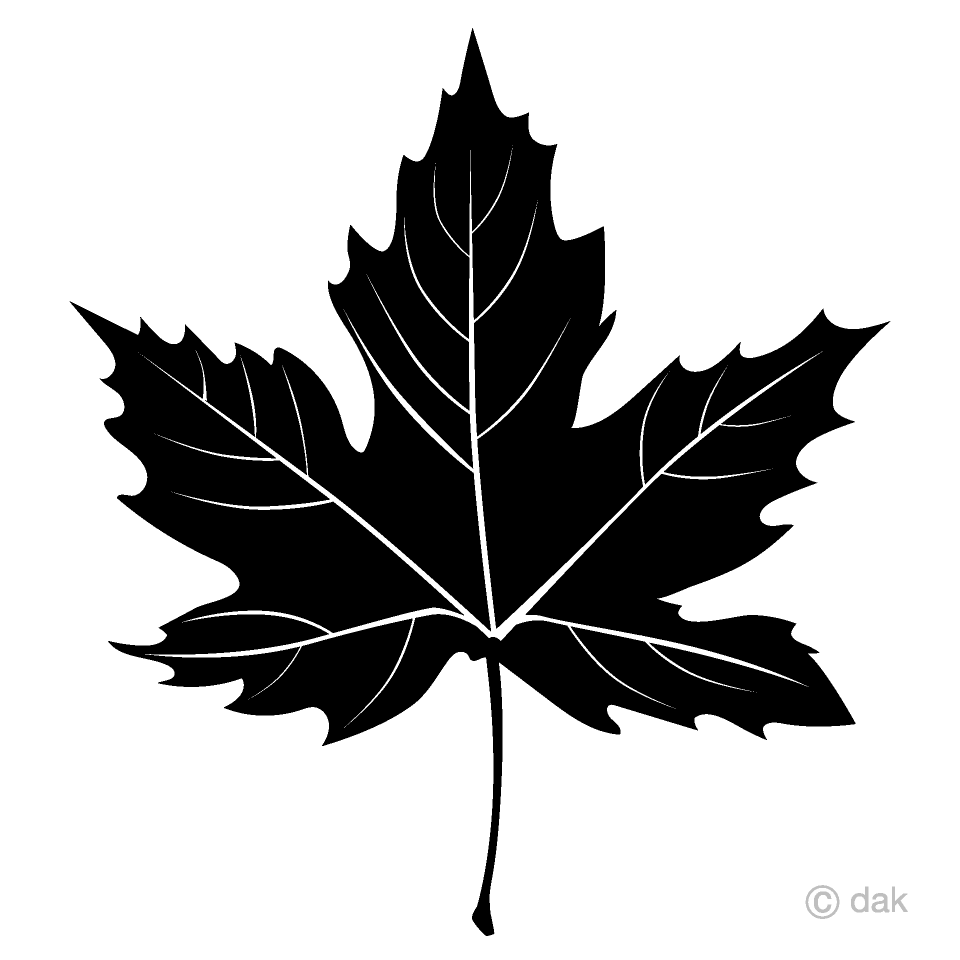 Maple leaf clipart black and white vector free library Black and White Maple Clipart Free Picture|Illustoon vector free library