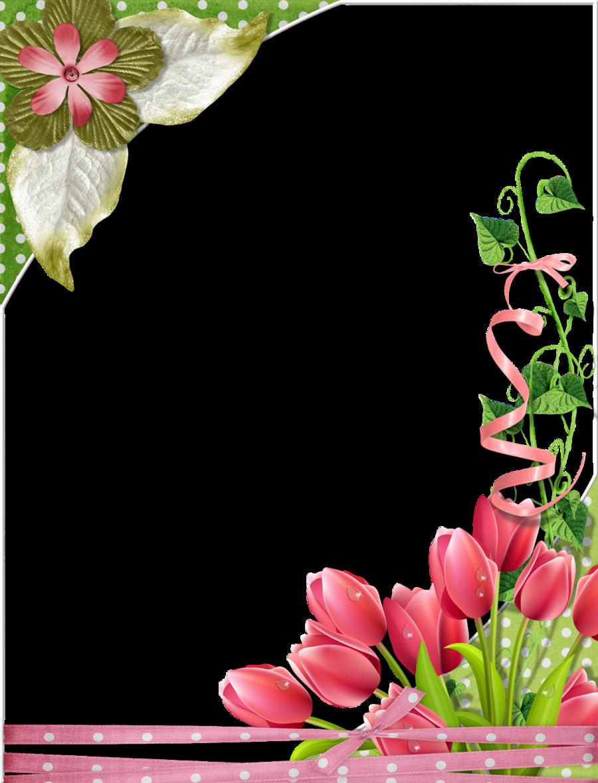 Marcos para fotos clipart gratis clip art library Still Life Frame clipart - Flower, Tulip, transparent clip art clip art library