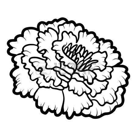 Marigold flower black and white clipart png free stock Collection of Marigold clipart | Free download best Marigold ... png free stock