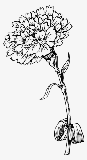 Marigold flower black and white clipart clipart library library Black And White Flower PNG, Transparent Black And White ... clipart library library