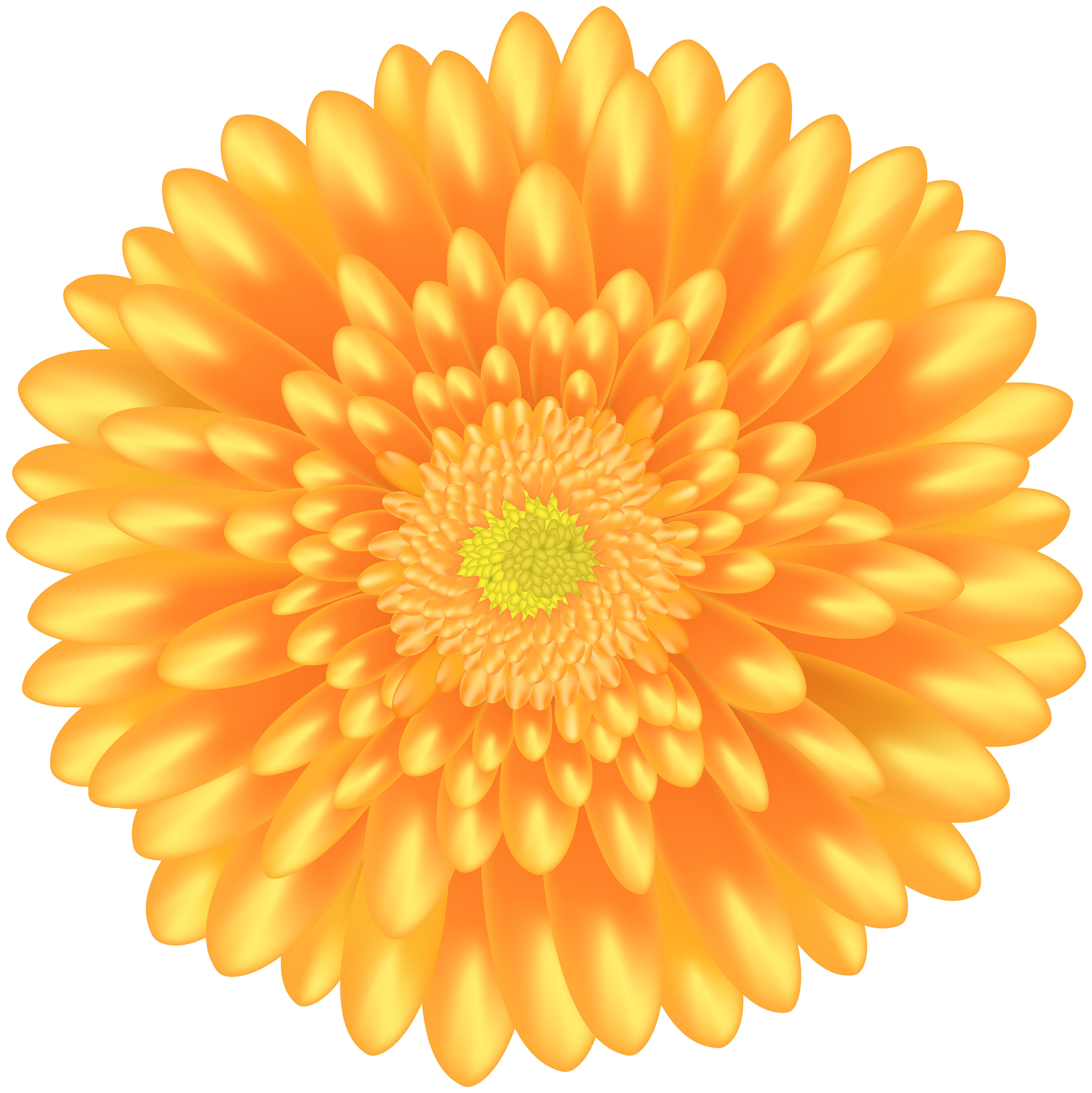 Marigold flower clipart image royalty free Orange Flower PNG Clip Art | Gallery Yopriceville - High-Quality ... image royalty free