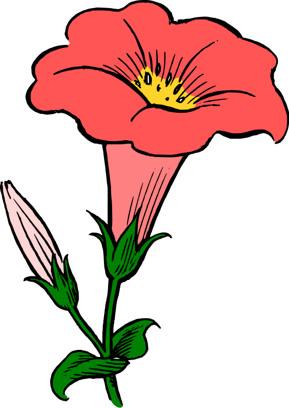 Marigold flower clipart png free library Marigold Glory Flower Clipart png free library