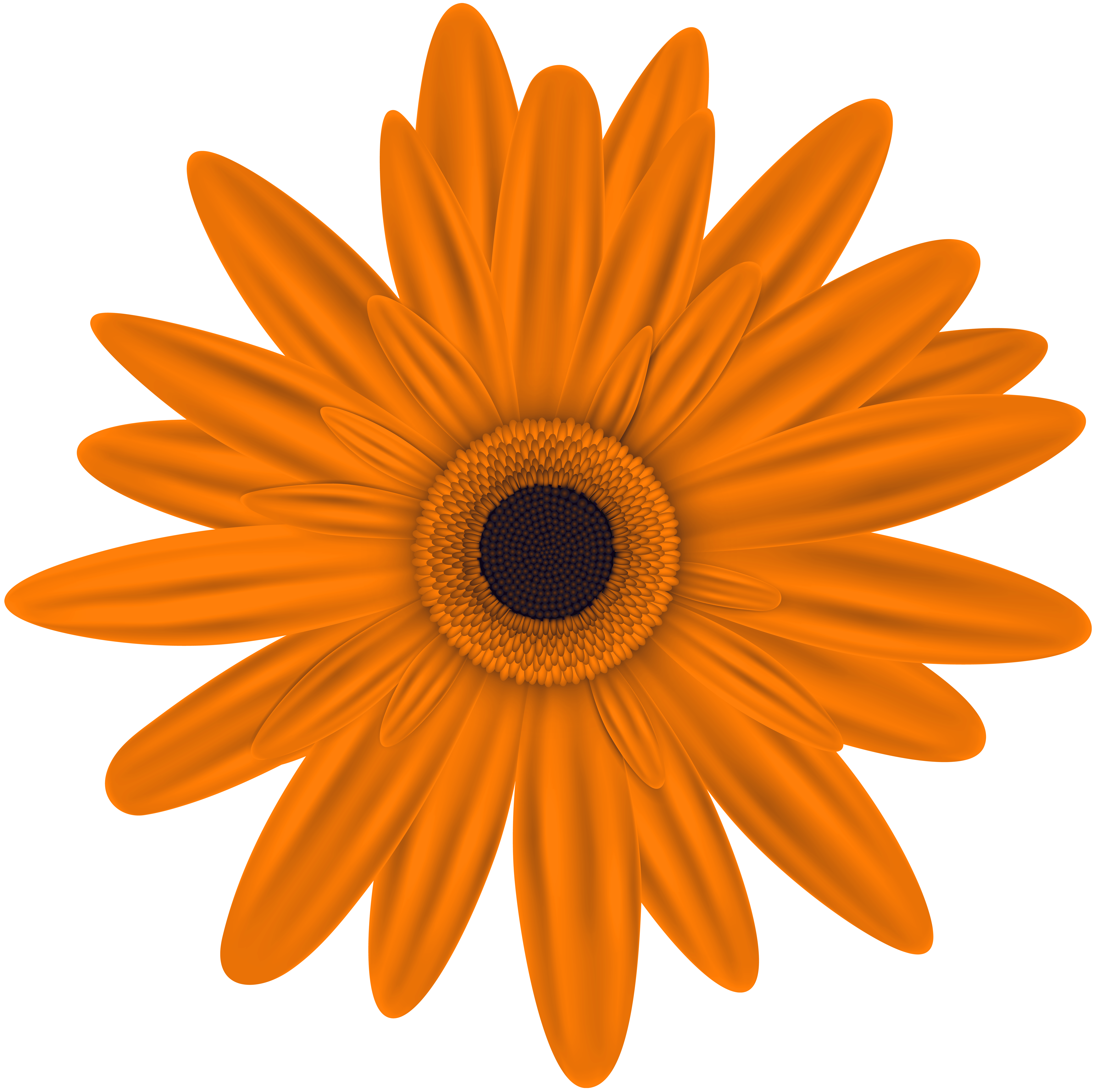 Marigold flower clipart clipart royalty free stock Orange Flower Clip Art PNG Image | Gallery Yopriceville - High ... clipart royalty free stock