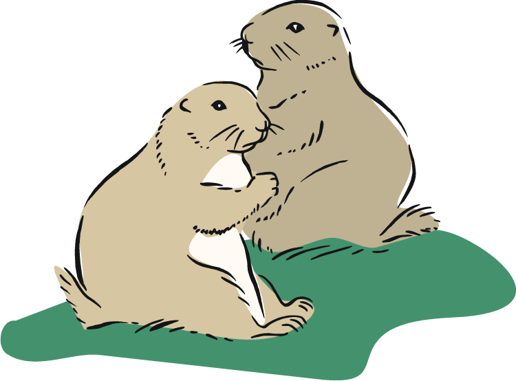 Prairie dog clipart vector free Free Prairie Dog Clipart vector free