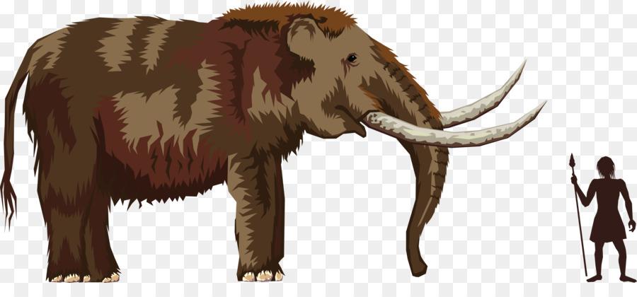 Mastodon clipart picture download Download mastodon transparent clipart The Mastodon Elephants Clip art picture download