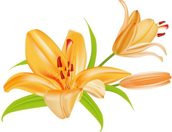 May calendar clipart summer clip freeuse Grab This Free Summer Flower Clip Art   Flower clips, Summer ... clip freeuse