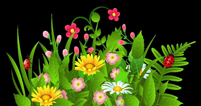 Spring flower clipart clip art transparent stock 19 Flowers clipart HUGE FREEBIE! Download for PowerPoint ... clip art transparent stock
