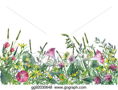 Meadow flower clipart free download Stock Illustration - Panoramic view of wild meadow flowers ... free download