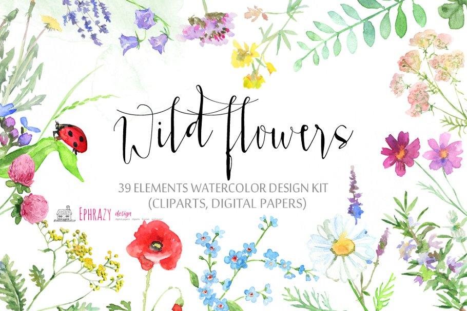 Meadow flower clipart clipart transparent Meadow flowers. Floral clipart paper ~ Illustrations ... clipart transparent