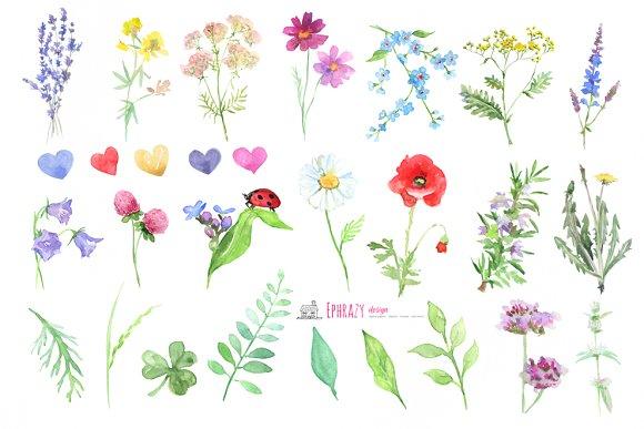 Meadow flower clipart clip art stock Meadow flowers. Floral clipart paper clip art stock