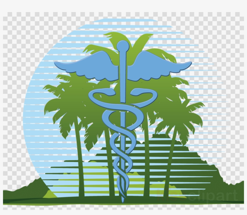 Medical clinic clipart image royalty free download Logo Timely Medical Clinic Clipart Clinic Health Care - Orange Palm ... image royalty free download