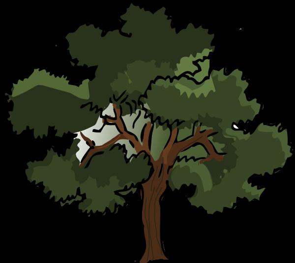 Nut tree clipart picture stock Oak Tree medium 600pixel clipart, vector clip art - ClipartsFree picture stock