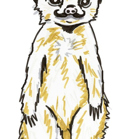 Meerkat mustache clipart clip art royalty free download Meerkat with mustache | dr.nice | Mustache, Nice, Original ... clip art royalty free download