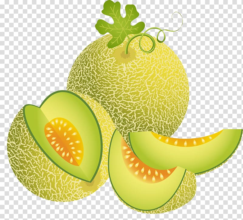 Melons Clip