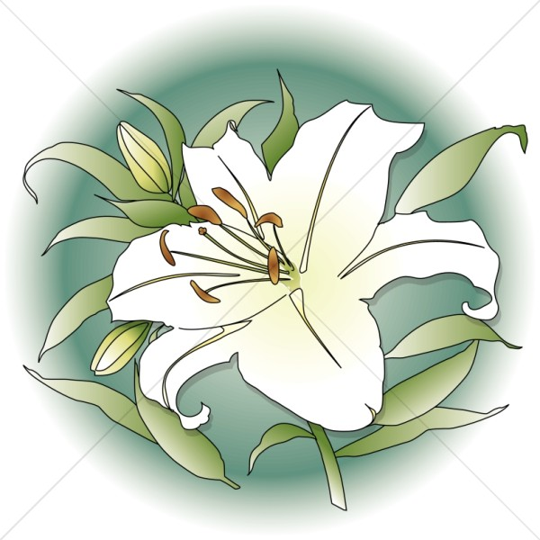 Memorial flowers clipart clipart transparent download Lilies clipart memorial flower - 199 transparent clip arts, images ... clipart transparent download
