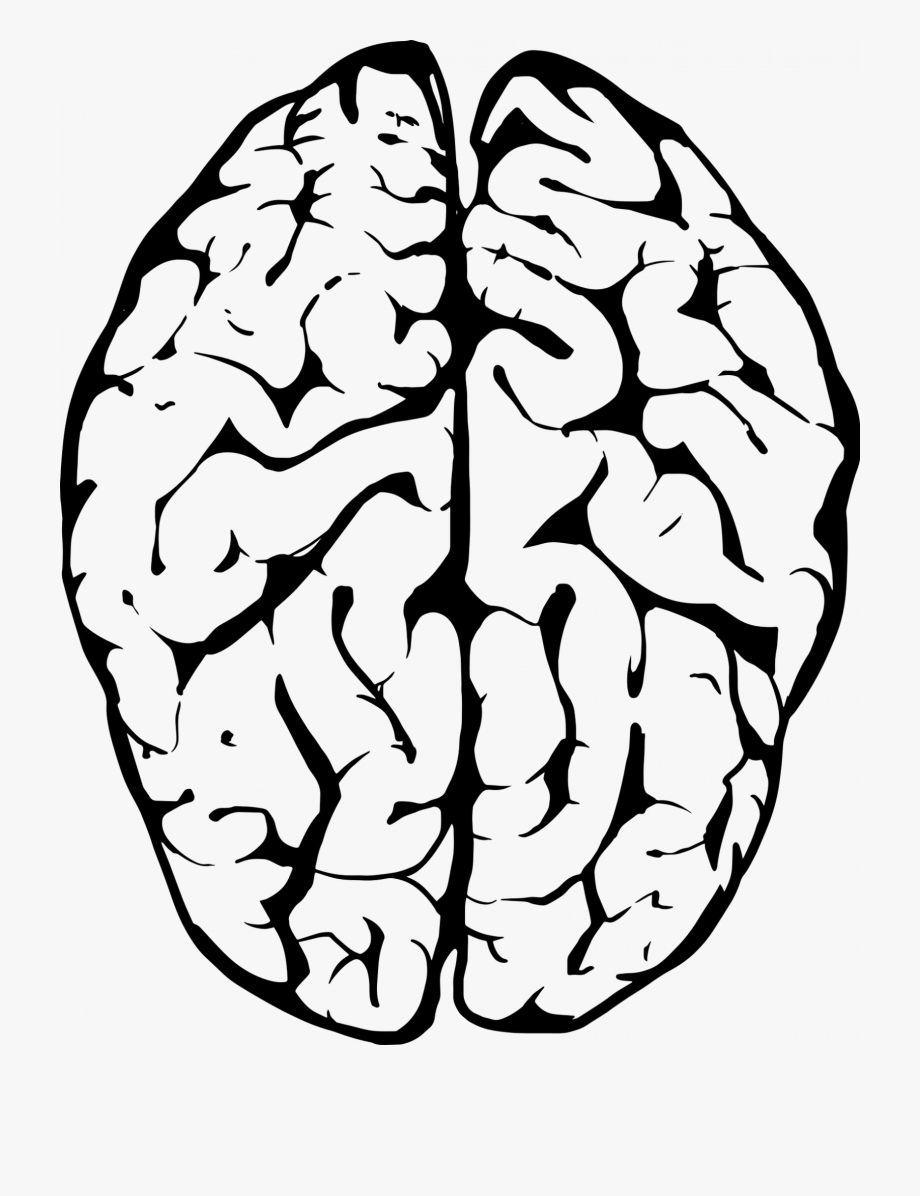 Memories clipart black and white svg royalty free New Insights Into The Way The Brain Combines Memories - Transparent ... svg royalty free